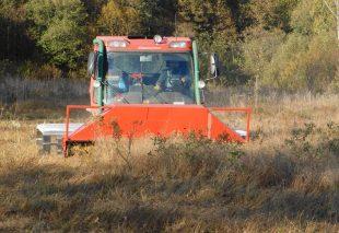 Борьба с древесно-кустарниковой растительностью
