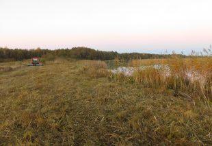 для возможности выхода из озера рыбы в период нереста выкашивали также сплошные заросли тростников вдоль береговой зоны озера Сервечь.