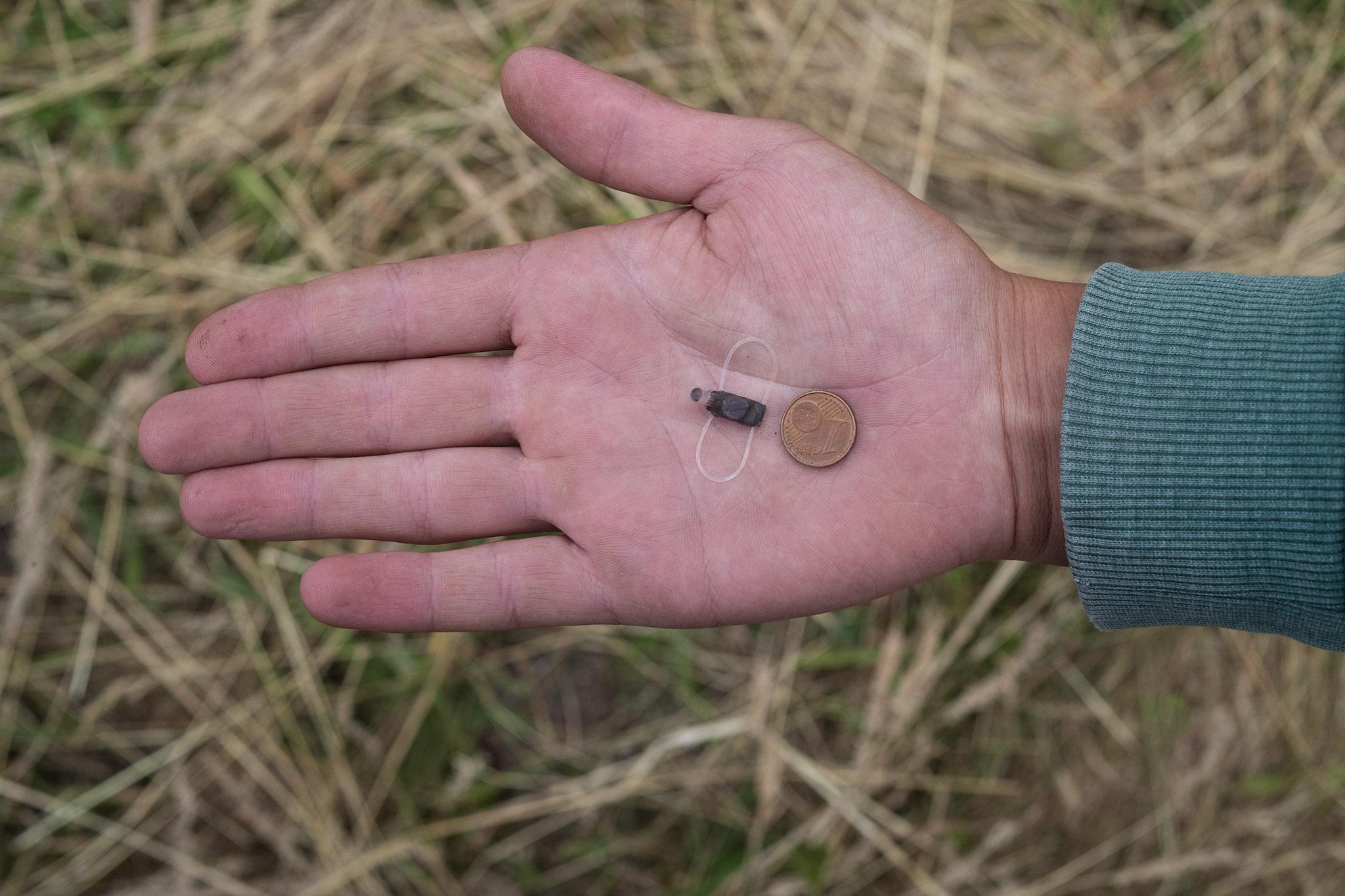 Geolokatorius ir 1 euro cento moneta