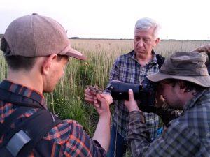 Counting of Aquatic warblers in Žuvintas Biosphere Reserve. From the left - Vytautas Eigirdas, Arūnas Pranaitis, Žymantas Morkvėnas