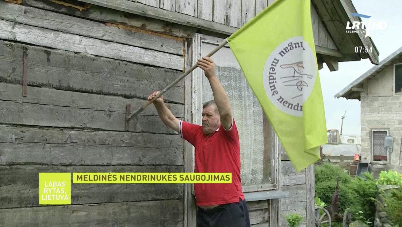 Farmer Alfonsas Stankus raises special aquatic warbler flag demonstrating it's dedication to the preservation of the species